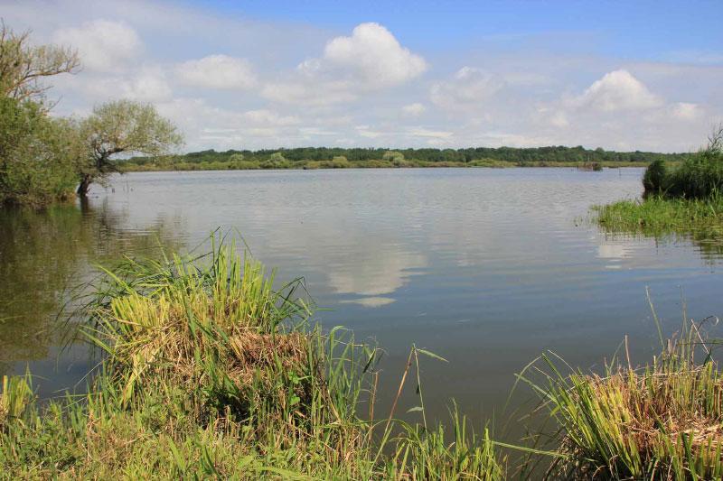Activités aux alentours de notre Gîte au pied du lac de Grand Lieu près de Nantes