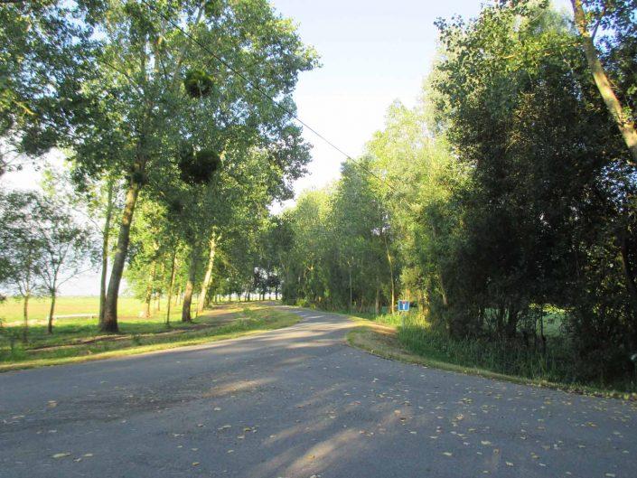 Gîte à Saint Lumine de Coutais dans le Pays de Retz, au coeur de la nature