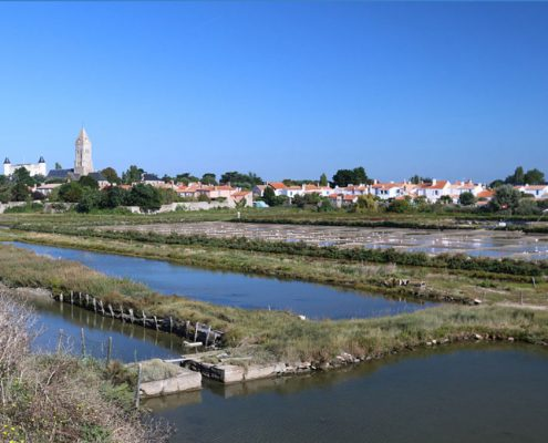 Noirmoutier en l'île, près du Gîte de Grand-Lieu
